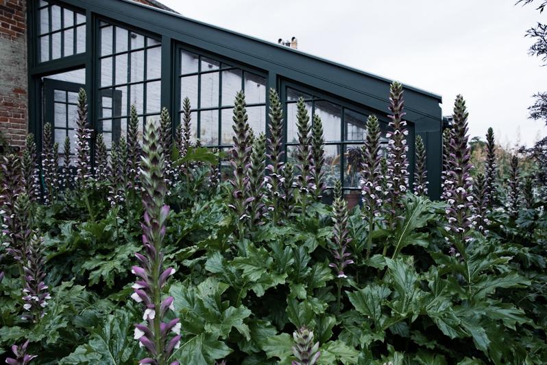 Caren Barry   Magical British Walled Gardens - Wimpole Estate