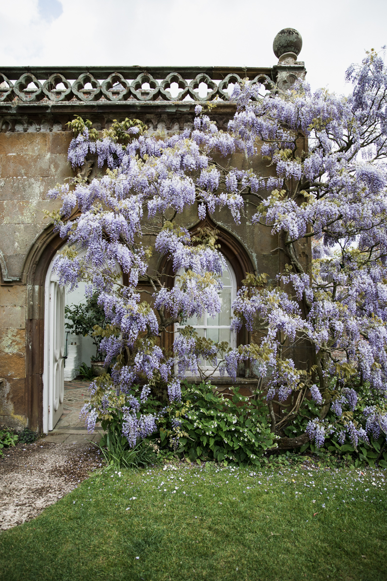 Caren Barry | Magical British Walled Gardens - Claydon Estate