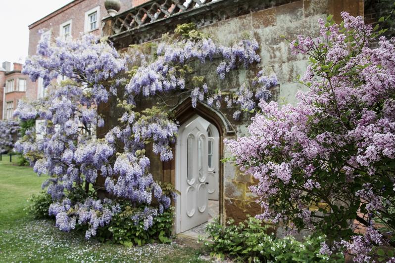 Caren Barry | Magical British Walled Gardens - Claydon Estate